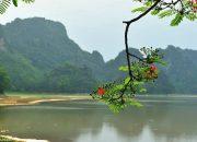 Những địa điểm du lịch gần Hà Nội mà gia đình bạn có thể ghé qua trong mùa thu này