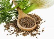 Điều trị viêm niệu đạo hiệu quả chỉ với những thực phẩm tự nhiên P2
