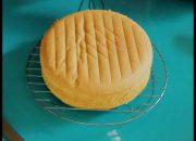 [Viet&English CC] Bánh bông lan cơ bản – How to make Sponge cake – ChiChi Nguyễn