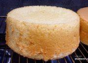 Cách làm bánh bông lan chiffon cơ bản | Basic chiffon cake recipe  for beginners.