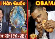 Bánh mỳ Việt Nam ngon nhất Thế Giới đài Hàn YTN đừng chê